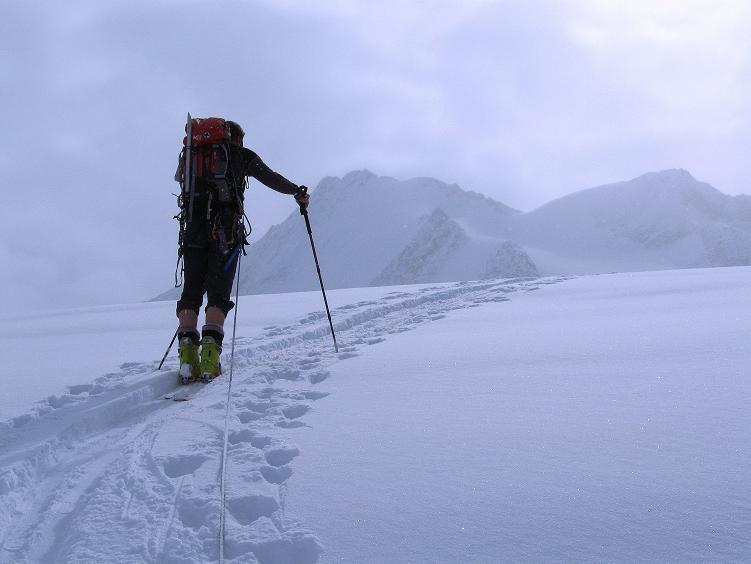 Foto: Andreas Koller / Ski Tour / Hintere Schwärze (3628m) - Topziel der Martin Busch Hütte / In die Sonne und der Hinteren Schwärze entgegen / 15.04.2008 19:21:07