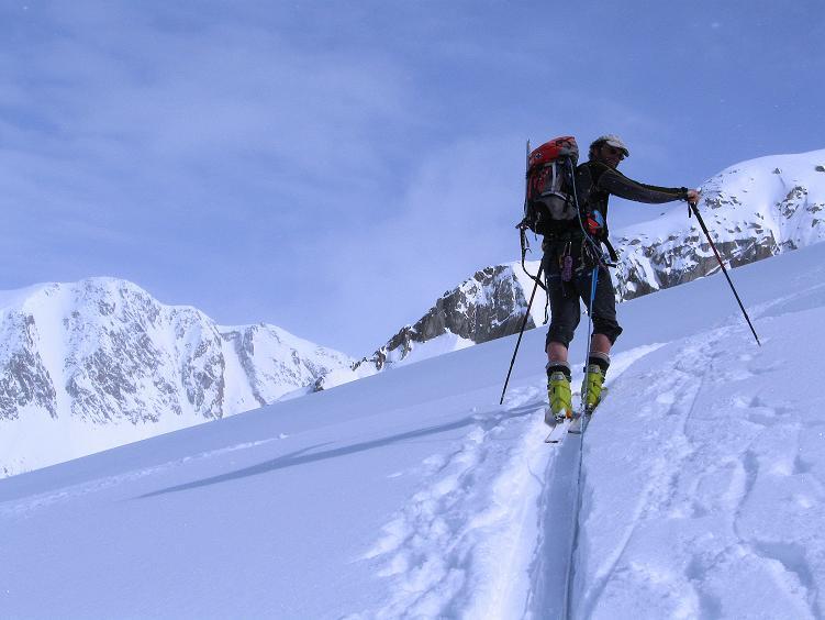 Foto: Andreas Koller / Ski Tour / Hintere Schwärze (3628m) - Topziel der Martin Busch Hütte / Aufstieg am Marzellferner mit Blick auf die Mutmalspitze (3522 m) / 15.04.2008 19:17:07
