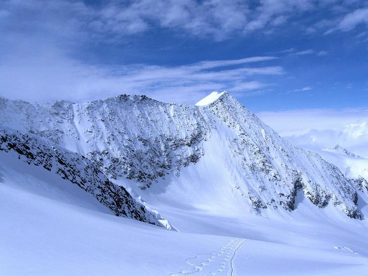 Foto: Andreas Koller / Ski Tour / Hintere Schwärze (3628m) - Topziel der Martin Busch Hütte / Blick nach W auf die Marzellspitzen (3550 m) / 15.04.2008 19:14:09