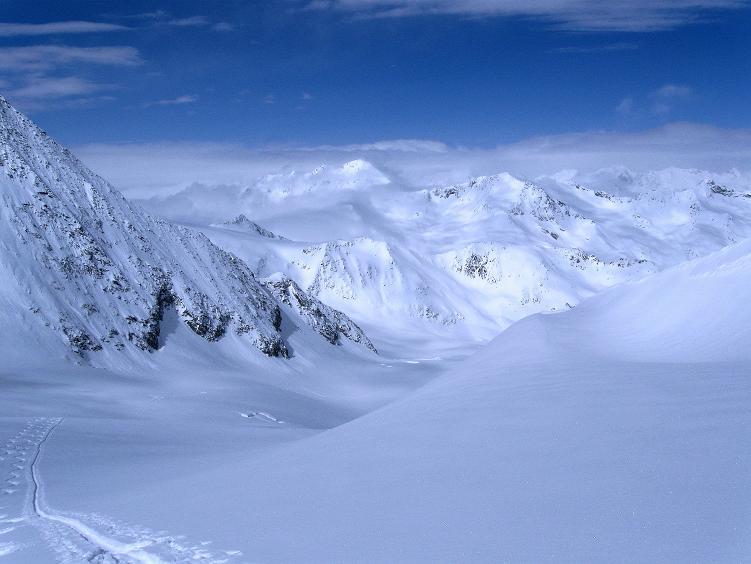 Foto: Andreas Koller / Ski Tour / Hintere Schwärze (3628m) - Topziel der Martin Busch Hütte / Blick über die Aufstiegsroute nach NW / 15.04.2008 19:13:32