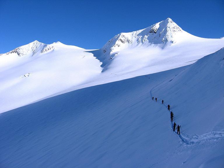 Foto: Andreas Koller / Ski Tour / Haute Route am Venediger (3674 m) / Übertritt auf das Rainerkees mit Panoramablick auf Hohes Aderl (3506 m), Großvenediger und Rainerhorn / 21.04.2008 15:16:21