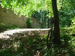 Foto: mime / Mountainbike Tour / Rund um Wien / der Lainzer Tiergartenmauer entlang / 11.05.2008 14:25:12