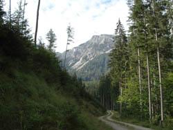 Foto: mime / Mountainbike Tour / Veitsch-Runde / Blick auf den Wildkamm / 12.05.2008 23:25:18