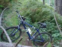 Foto: mime / Mountainbike Tour / Veitsch-Runde / 12.05.2008 23:25:59