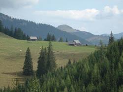 Foto: mime / Mountainbike Tour / Veitsch-Runde / 12.05.2008 23:25:37