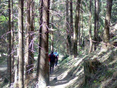Foto: pandy / Wander Tour / Rennfeld / 13.05.2008 11:53:13