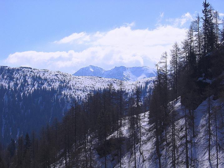 Foto: Andreas Koller / Wander Tour / Vom Zauchensee auf den Gamskogel (2186m) / Oberhalb der Oberzauchenseealm blickt man nach S in die Radstädter Tauern um die Südwiener Hütte / 16.05.2008 01:46:51