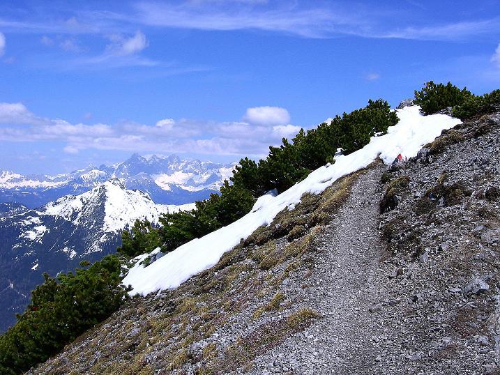 Foto: Andreas Koller / Wander Tour / Vom Zauchensee auf den Gamskogel (2186m) / Blick vom Anstiegsweg nach NO zum Dachstein (2996 m) / 16.05.2008 01:42:42