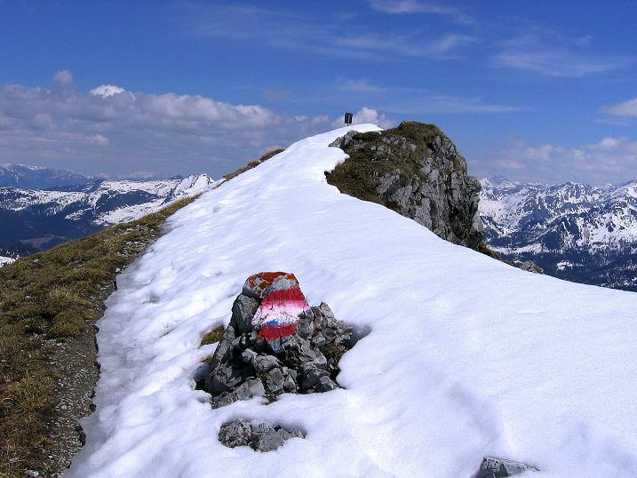 Foto: Andreas Koller / Wander Tour / Vom Zauchensee auf den Gamskogel (2186m) / Die letzten Meter am nie ausgesetzten Grat / 16.05.2008 01:41:36