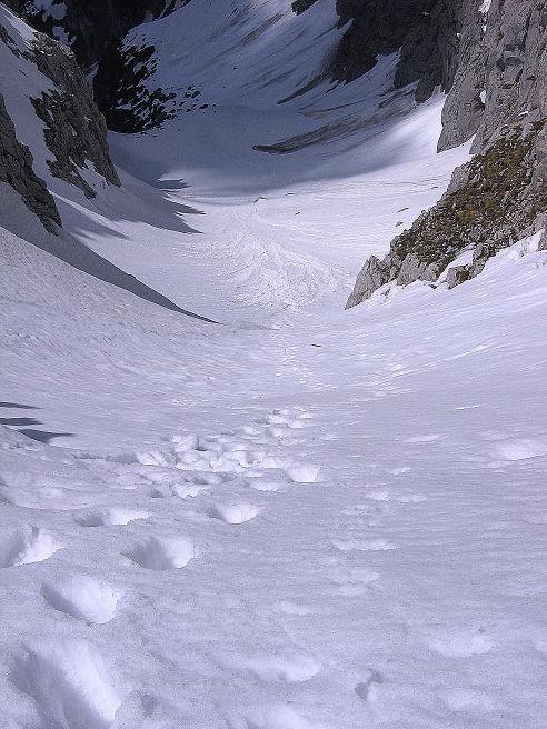 Foto: Andreas Koller / Wander Tour / Von Scheffau in das Schneekar (2121m) / Blick von der Treffauer Lucke in die Aufstiegsrinne aus dem Schneekar / 16.05.2008 02:18:55