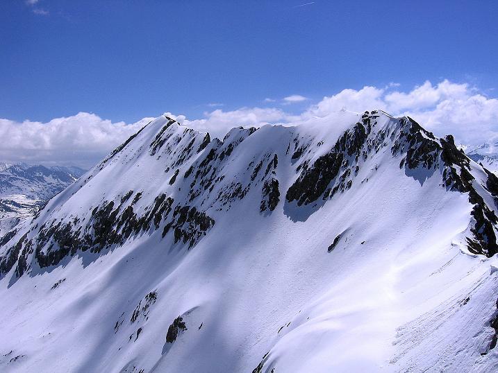 Foto: Andreas Koller / Ski Tour / Vom Zauchensee auf den Schwarzkopf (2263m) / Die Steinfeldspitze (2344 m) / 16.05.2008 02:55:04