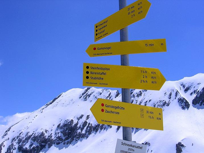 Foto: Andreas Koller / Ski Tour / Vom Zauchensee auf den Schwarzkopf (2263m) / Im Schneekarsattel mit der Steinfeldspitze (2344 m) im Hintergrund / 16.05.2008 02:52:14