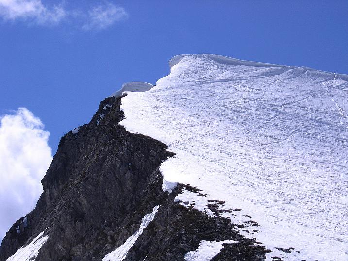 Foto: Andreas Koller / Ski Tour / Vom Zauchensee auf den Schwarzkopf (2263m) / Letzter Blick auf den steilen Gipfelaufbau des Schwarzkopfs / 16.05.2008 02:51:39