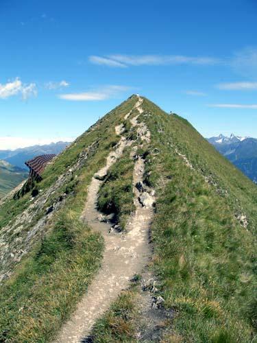 Foto: vince 51 / Wander Tour / Von Serfaus auf den Pezid / 16.05.2008 22:50:10