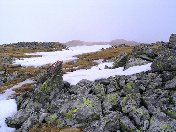 Foto: Andreas Koller / Wander Tour / Durch den Brandstätter Graben auf den Maierangerkogel (2356m) / Der behäbige Gipfelaufbau des Maierangerkogels / 20.05.2008 00:29:14