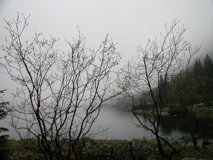 Foto: Andreas Koller / Wander Tour / Über den Morskie Oko zum Fuß des Rysy (1583 m) / Morskie Oko / 26.05.2008 17:52:31