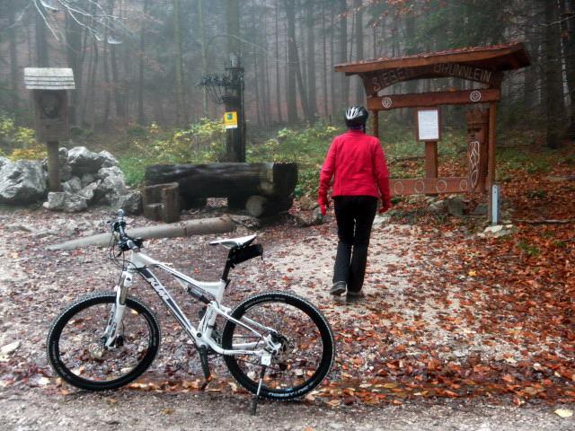 Foto: Wolfgang Lauschensky / Mountainbike Tour / Bike & Hike am Laudachsee / am Glücksplatz Siebenbrünnlein / 24.10.2012 15:37:36