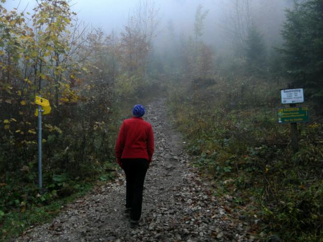 Foto: Wolfgang Lauschensky / Mountainbike Tour / Bike & Hike am Laudachsee / Beginn der Wanderung  / 24.10.2012 15:37:15
