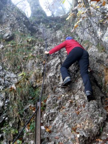 Foto: Wolfgang Lauschensky / Mountainbike Tour / Bike & Hike am Laudachsee / Klettersteigpassagen / 24.10.2012 15:36:26