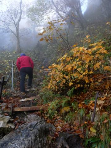 Foto: Wolfgang Lauschensky / Mountainbike Tour / Bike & Hike am Laudachsee / kurz vor der Hohen Scharte / 24.10.2012 15:36:14
