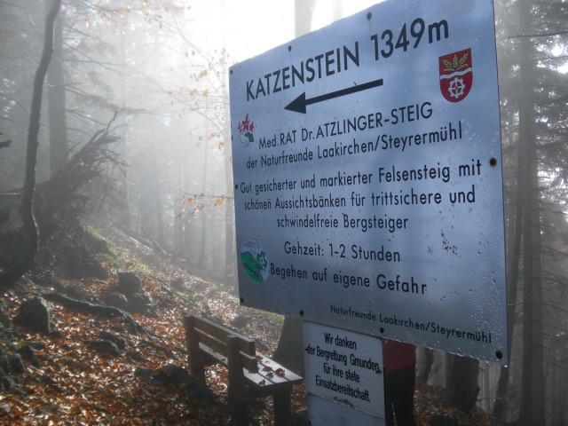 Foto: Wolfgang Lauschensky / Mountainbike Tour / Bike & Hike am Laudachsee / Abzweigung zum Katzenstein / 24.10.2012 15:36:02