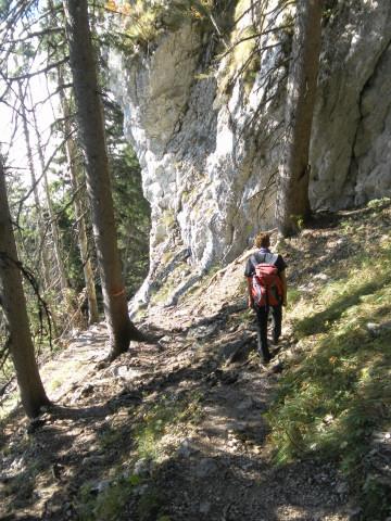 Foto: Wolfgang Lauschensky / Mountainbike Tour / Bike & Hike am Laudachsee / steiler Waldpfad / 24.10.2012 15:32:34