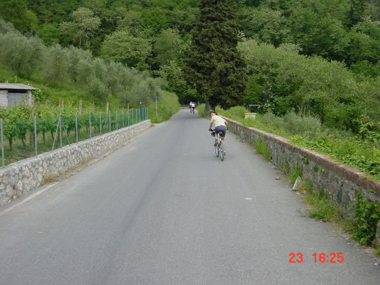 Foto: Manfred Karl / Mountainbike Tour / Von Marlia nach Valgiano / Aussichtsstraße zwischen Matraia und Valgiano / 27.05.2008 20:09:59
