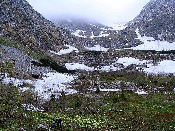 Foto: Andreas Koller / Wander Tour / Dolina Matej Laki und Malolaczniak (2096 m) / Unterhalb des Przelecz Kondracka / 29.05.2008 01:41:46