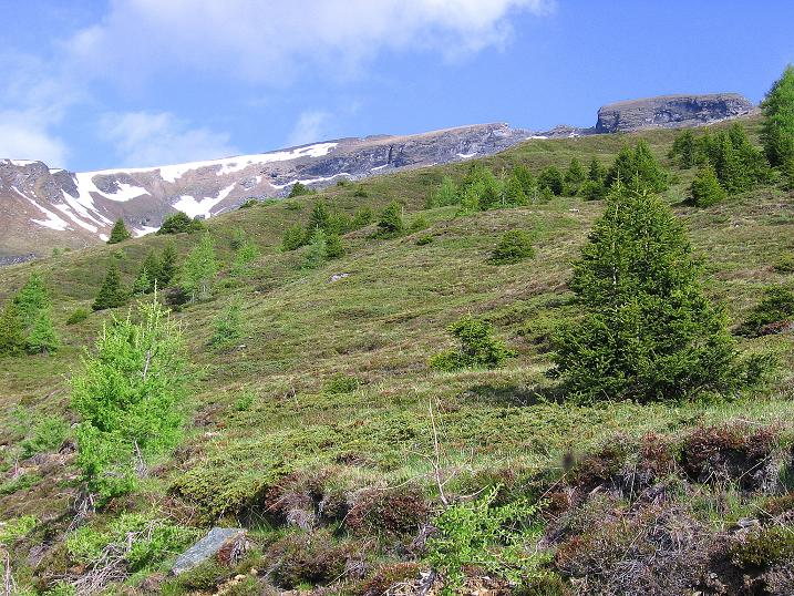 Foto: Andreas Koller / Wander Tour / Gmeineck - Trebesinger Hausberg (2592 m) / Kurz vor dem Kar / 02.06.2008 21:28:10
