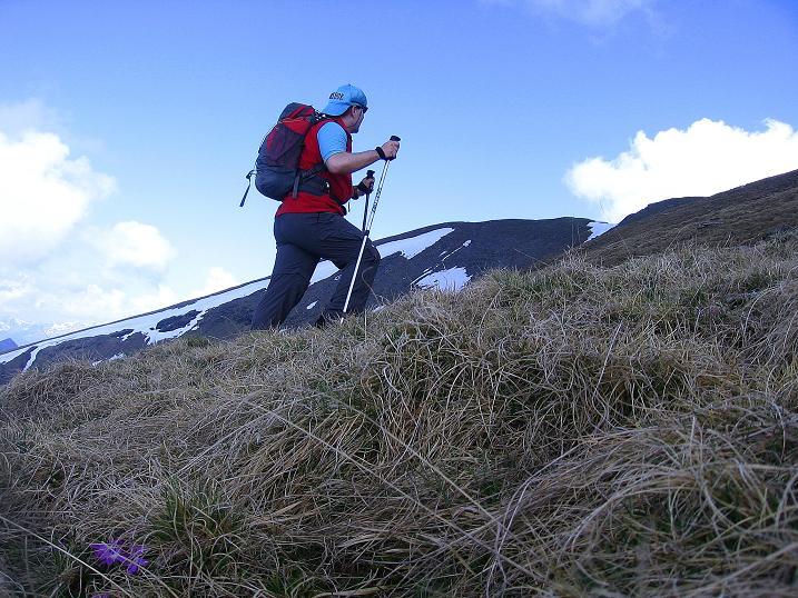 Foto: Andreas Koller / Wander Tour / Gmeineck - Trebesinger Hausberg (2592 m) / Aufstieg am SO-Rücken; der Gipfel ist schon erkennebar / 02.06.2008 21:21:00