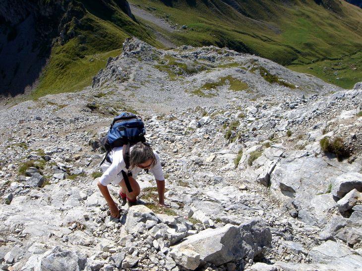 Foto: Manfred Karl / Wander Tour / Polinik über die Spielbodenalmen / Felsiger Gipfelaufstieg / 02.06.2008 22:51:25