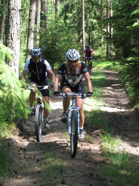 Foto: Jürgen Lindlbauer / Mountainbike Tour / Von Summerau nach Linz / steiler Waldweg von Luegstetten nach Lindach / 02.06.2008 23:09:18
