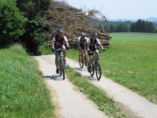 Foto: Jürgen Lindlbauer / Mountainbike Tour / Von Summerau nach Linz / Anstieg beim Hopfgartner / 02.06.2008 23:07:35