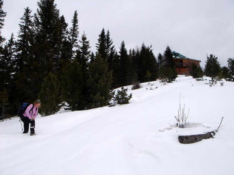 Foto: Manfred Karl / Wander Tour / Steinplan vom Oberkamper / Schneestapfen kurz unterhalb des Gipfels / 03.06.2008 07:36:42