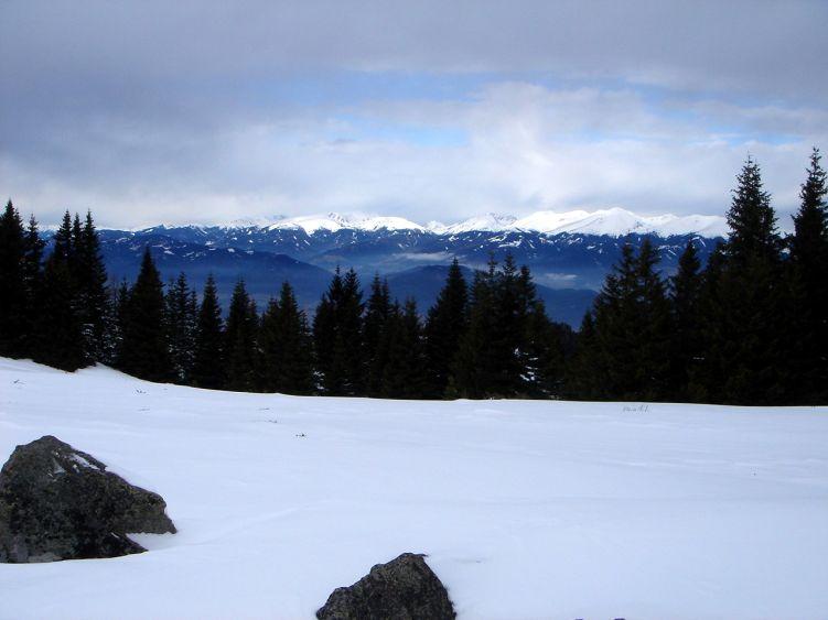 Foto: Manfred Karl / Wander Tour / Steinplan vom Oberkamper / Seckauer Alpen / 03.06.2008 07:35:20