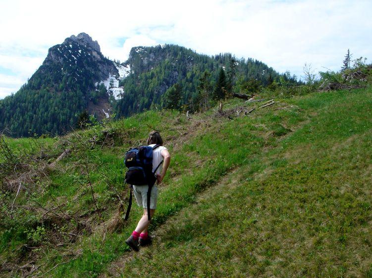 Foto: Manfred Karl / Wander Tour / Vom Soderbauer auf das Schwarzeck / Unterhalb der Bim Alm / 03.06.2008 08:42:01