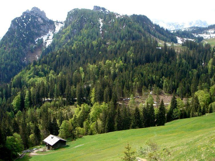 Foto: Manfred Karl / Wander Tour / Vom Soderbauer auf das Schwarzeck / Bim Alm mit Gföll- und Grubhörndl / 03.06.2008 08:40:30