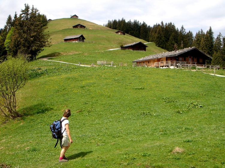 Foto: Manfred Karl / Wander Tour / Vom Soderbauer auf das Schwarzeck / Aufgefädelt! / 03.06.2008 08:39:57