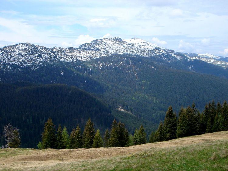 Foto: Manfred Karl / Wander Tour / Vom Soderbauer auf das Schwarzeck / Steinplatte / 03.06.2008 08:36:42