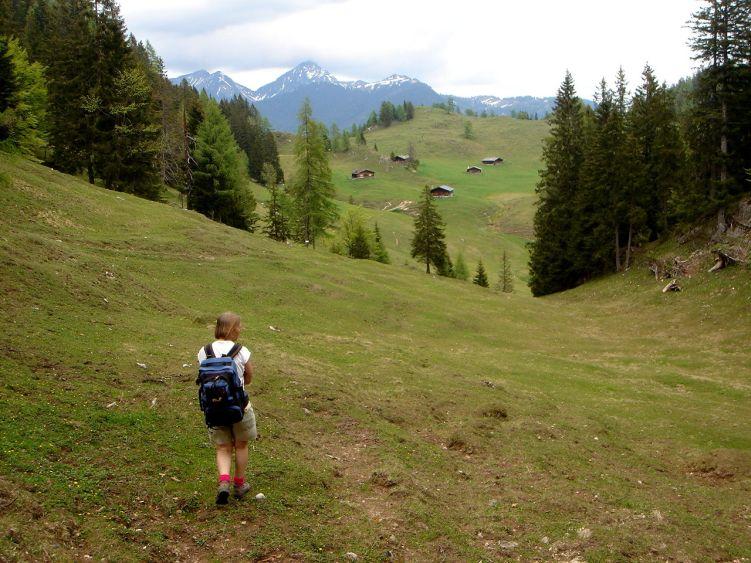 Foto: Manfred Karl / Wander Tour / Vom Soderbauer auf das Schwarzeck / Thällern Alm / 03.06.2008 08:27:26