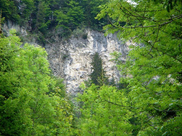 Foto: Manfred Karl / Wander Tour / Vom Soderbauer auf das Schwarzeck / Interessante geologische Formationen am Weg zur Schwarzeck Alm / 03.06.2008 08:26:59