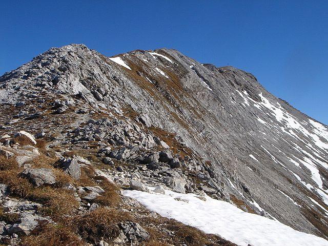 Foto: Manfred Karl / Wander Tour / Weißeck aus dem Riedingtal / Am schmäler werdenden Grat lässt sich wunderbar höhersteigen / 03.06.2008 19:56:20