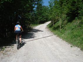 Foto: mime / Mountainbike Tour / Öhlerschutzhaus / Auffahrt aufs Öhlerschutzhaus / 04.06.2008 08:25:03