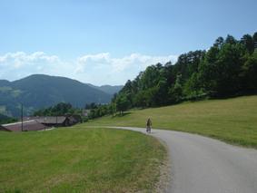 Foto: mime / Mountainbike Tour / Öhlerschutzhaus / Auffahrt zum Kreuzstein / 04.06.2008 08:26:16