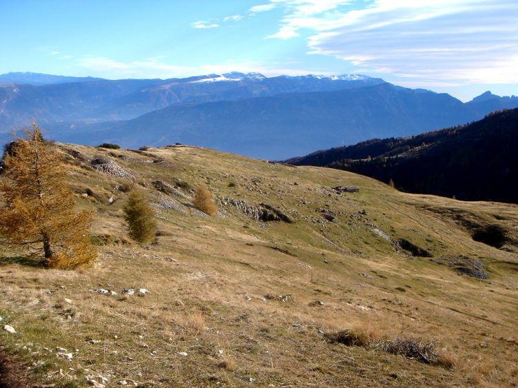 Foto: Manfred Karl / Wander Tour / Auf einen Aussichtsberg der Extraklasse – Monte Altissimo di Nago / Herbstliche Almfläche am Ende des Fahrweges / 05.06.2008 20:59:25