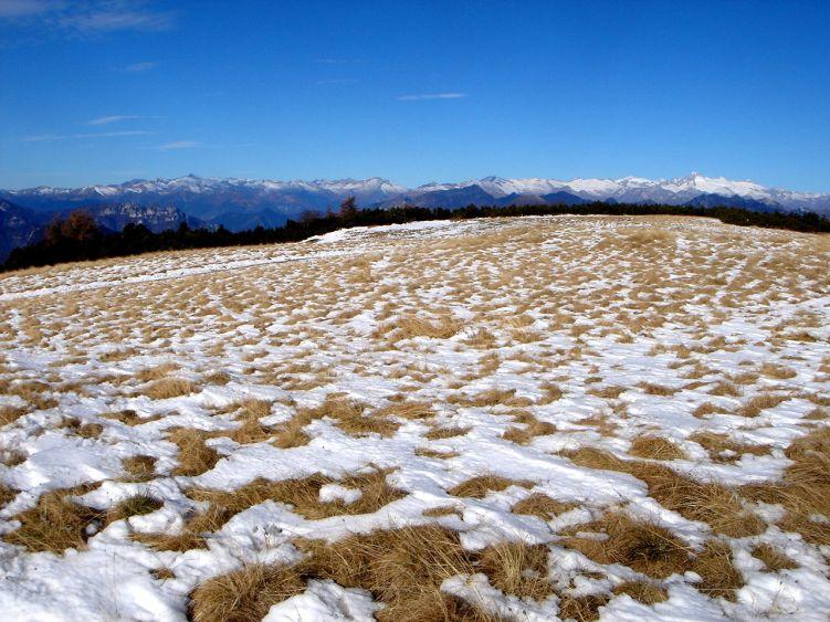 Foto: Manfred Karl / Wander Tour / Auf einen Aussichtsberg der Extraklasse – Monte Altissimo di Nago / Fleckerlteppich am Monte di Nago / 05.06.2008 20:56:16