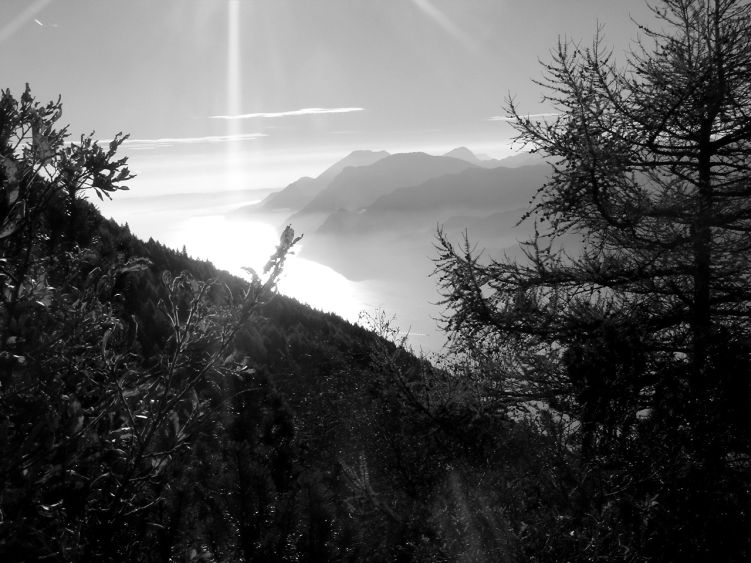 Foto: Manfred Karl / Wander Tour / Auf einen Aussichtsberg der Extraklasse – Monte Altissimo di Nago / Gardaseeglanz in der Spätherbstsonne / 05.06.2008 20:37:10