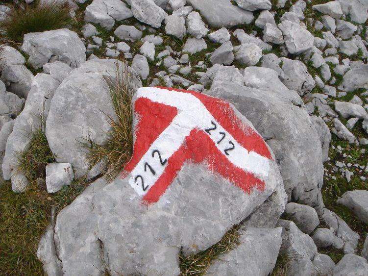 Foto: Manfred Karl / Wander Tour / Knallstein über die Stefan Schatzl Hütte / Die Wegmarkierung ist gut / 08.06.2008 19:49:20