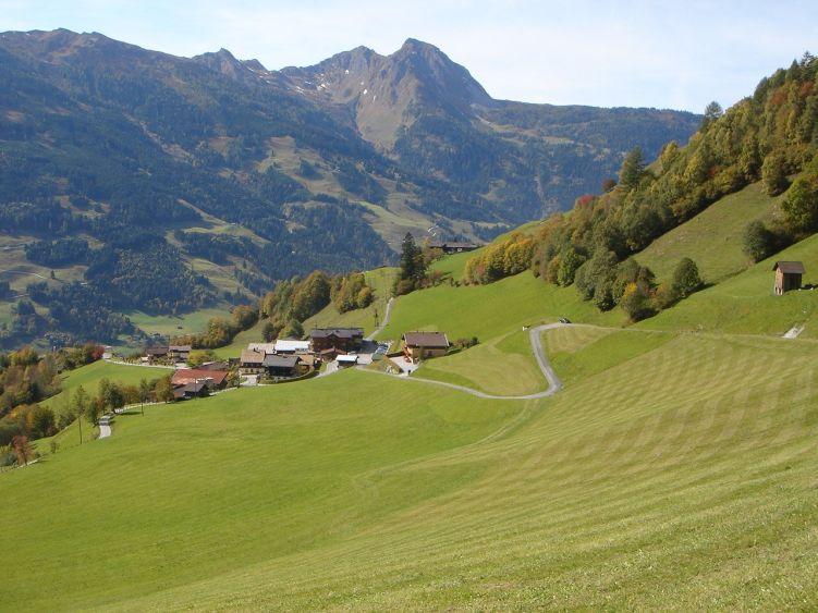 Foto: Manfred Karl / Wander Tour / Auf dem Hias Wallner Steig zum Haßeck / Eine friedliche Landschaft: Etwas oberhalb vom Ausgangspunkt beim Hauserbauer / 14.06.2008 16:44:49