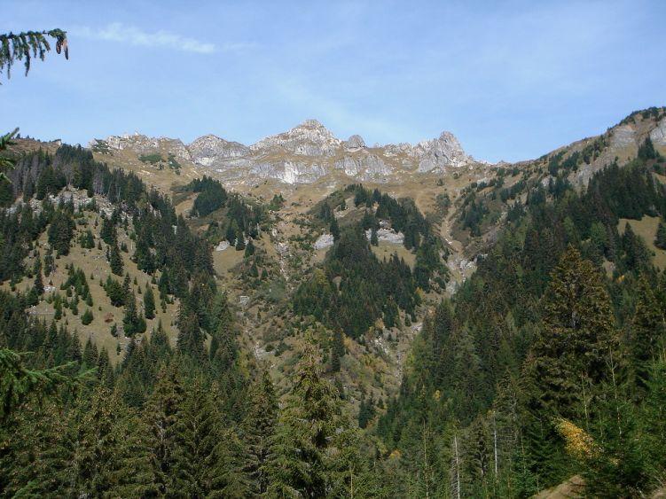 Foto: Manfred Karl / Wander Tour / Auf dem Hias Wallner Steig zum Haßeck / Schuhflicker vom Aufstieg ins Arltörl gesehen / 14.06.2008 16:43:48